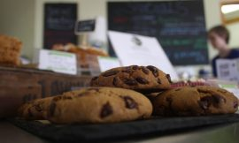 Ecotricity offers Britain's first vegan visitor centre