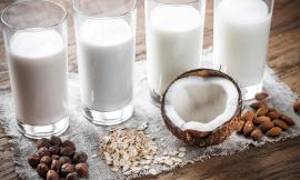 Vegan product names banned under EU Regulation