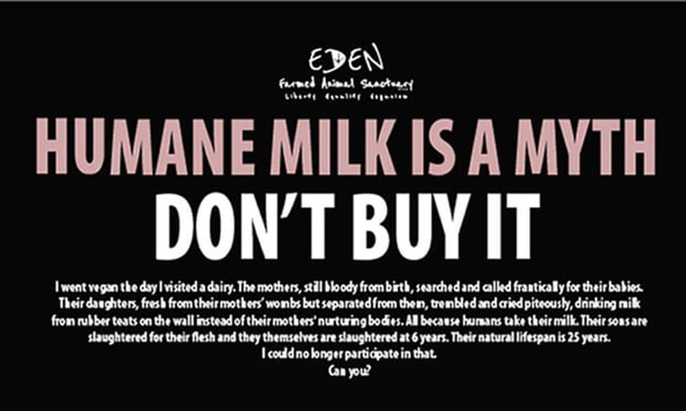 vegan advert