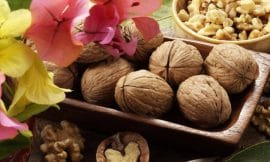 UK revival for California Walnuts
