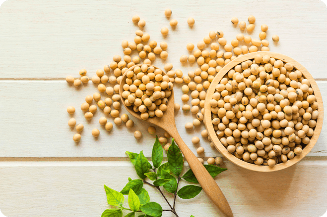 UK Could Save €7.54 Billion by Eating More Soya Products