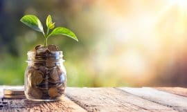 $8.7 Trillion Investments in Sustainable Industries Boost Vegan Food Industry